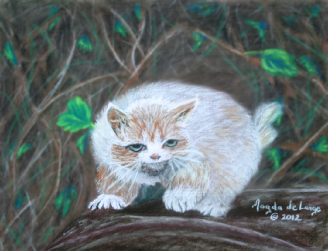 Scaredy Cat Pastel Painting