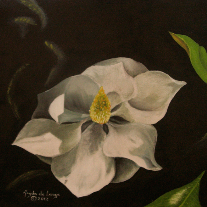 Magnolia<br/>Oil Painting on Canvas Sheet